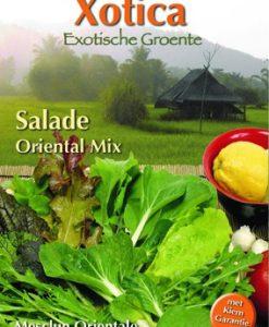 Xotica Salade Mix Exotic Baby Leaf Seeds 4 Garden