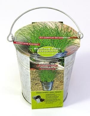 Zinc bucket Chives Seeds 4 Garden