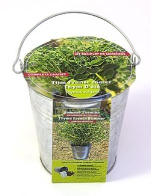 Zinc bucket Thyme winter Seeds 4 Garden