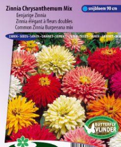 Zinnia Burpeeana/Chrysanth.flowered Mix Seeds 4 Garden