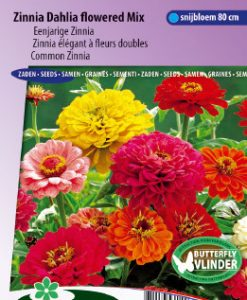 Zinnia Dahlia flowered Mix Seeds 4 Garden