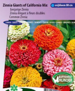 Zinnia Giants of California Mix Seeds 4 Garden