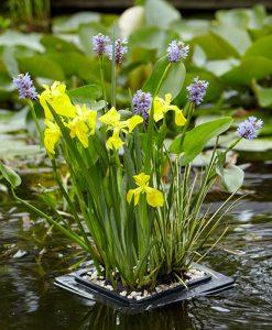 Pond Plant Raft kit