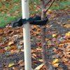 Tree Stake & Tie Pack