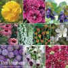 Ultimate Perennial Collection