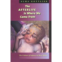 The Afterlife Is Where We Come from by Alma Gottlieb Book Used cover