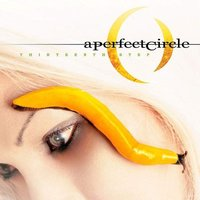 A Perfect Circle Thirteenth Step Used CD at Music Magpie Image