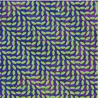 Animal Collective Merriweather Post Pavilion Used CD at Music Magpie Image