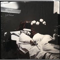 Antony & the Johnsons I Am a Bird Now Used CD at Music Magpie Image