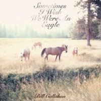 Bill Callahan Sometimes I Wish I Were an Eagle Used CD at Music Magpie Image