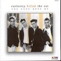 Curiosity Killed the Cat the Very Best of Curiosity Killed the Cat at Music Magpie Image