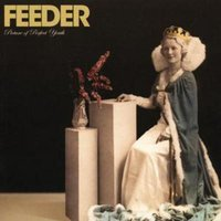 Feeder Picture of Perfect Youth Limited Cd Used CD at Music Magpie Image