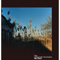 The Cinematic Orchestra Ma Fleur Used CD at Music Magpie Image