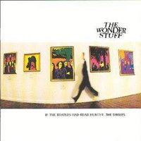 The Wonder Stuff If the Beatles Had Read Hunter the Singles Used CD at Music Magpie Image