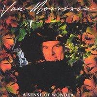 Van Morrison a Sense of Wonder Used CD at Music Magpie Image