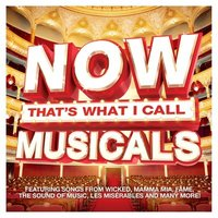 Various Performers Now Thats What I Call Musicals Used CD at Music Magpie Image