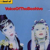 Voice of the Beehive the Best of the Beehive Used CD at Music Magpie Image