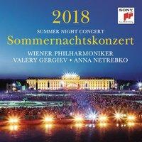 Wiener Philharmoniker Sommernachtskonzert 2018 Used CD at Music Magpie Image