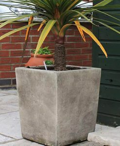 Large Plain Pot
