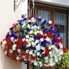 Union Jack Pre-Planted Baskets