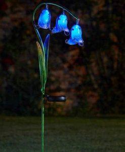 Bluebell Solar Flower