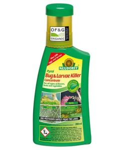 Bug Free Bug and Larvae Killer 250ml Concentrate