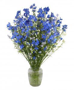 Garden Delphinium Delight Flowers & Plants Co.