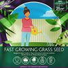 Fast Grass Seed Mix