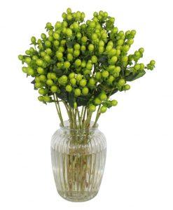 Garden Premium Hypericum Flowers & Plants Co.