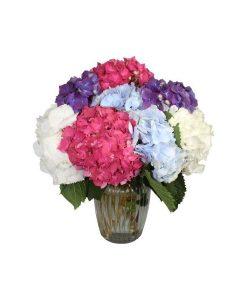 Garden Republic of Love Flowers & Plants Co.