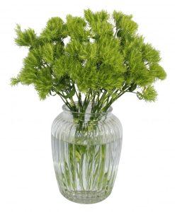 Garden Velvet Green Flowers & Plants Co.